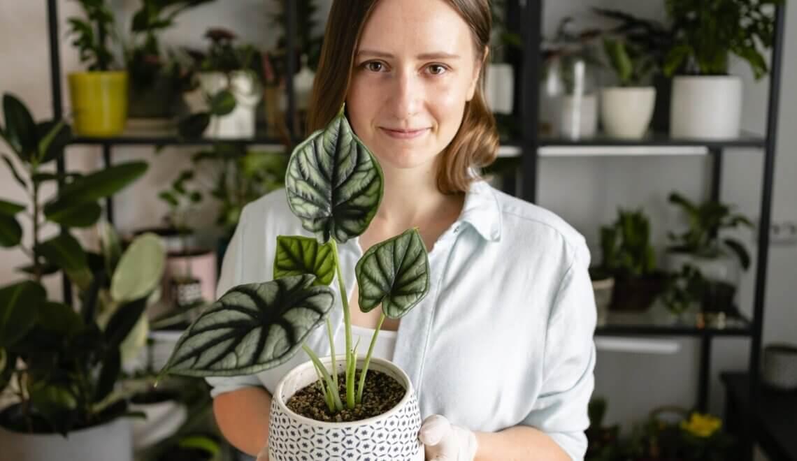 Qual a melhor forma de agruparmos as plantas?
